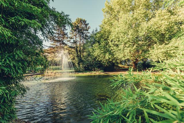 Schlosspark Ingelfingen